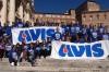 Avis comunale Livorno